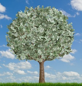 Play US Powerball & shake the biggest money tree in the world